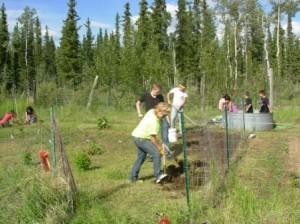planting_a_garden_in_the_village (1)
